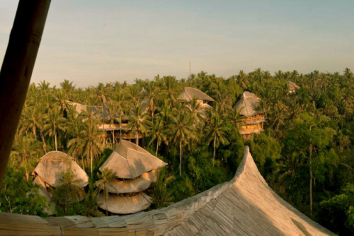 Green Village 5