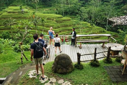 ubud tegalalang ebikes tour 02