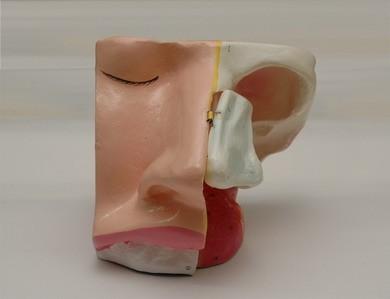 bmd 05 model hidung